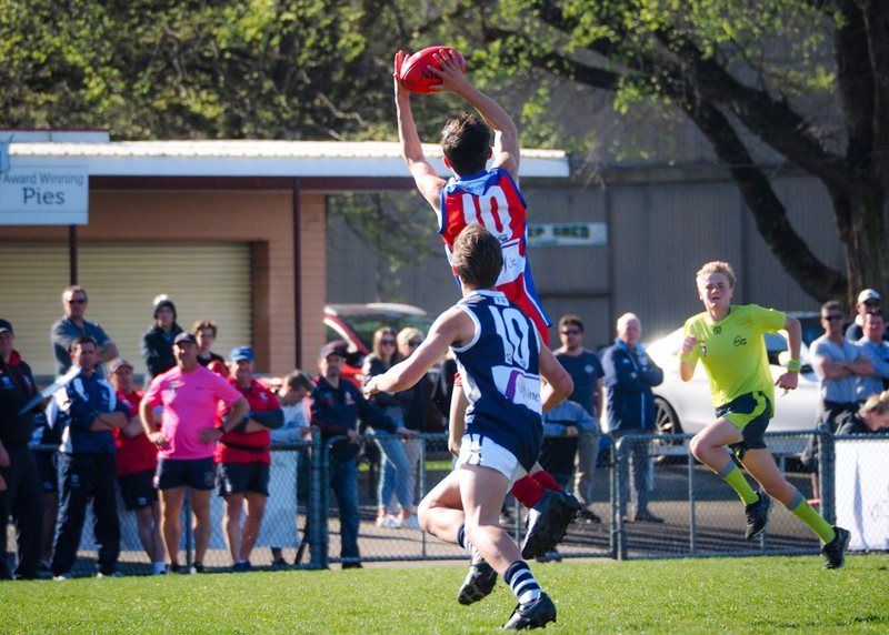 Boys-Div-1-Falcons-v-Power-Vline-Cup-2017-(By-Jodie-Harlow)-(31)